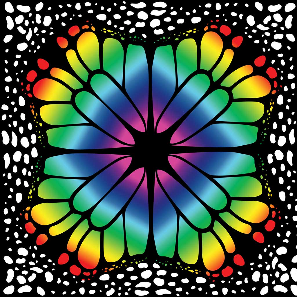 Butterfly Wings Rainbow Circle Skirt